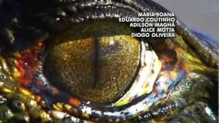 HD   Vinheta de Abertura Araguaia