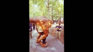 VLM Walking Dinosaur on the loose