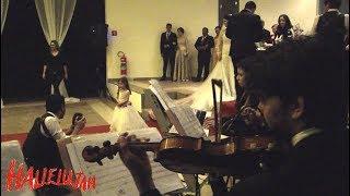 Entrada da Daminha | Aleluia Instrumental Violino Hallelujah do Shrek Casamento Espaço Sausalito