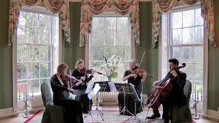 Sweet Child Of Mine (Guns n Roses) Wedding String Quartet