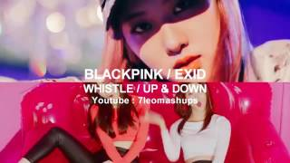 [LeoMashup] BLACKPINK / EXID - WHISTLE / UP & DOWN