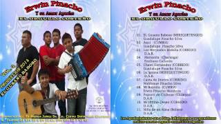 11 Niña de mi alma - ERWIN PINACHO Y SU AMOR APACHE