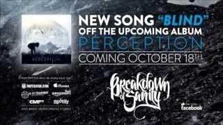 Breakdown of Sanity - Blind (New Song 2013)