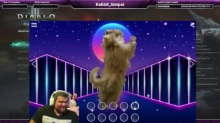 Kitty Wop w/ Some Rabbit Hop!... Watch in HD