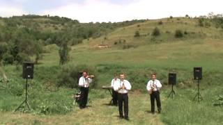 Mircea Mocan si formatia- melodie de masa