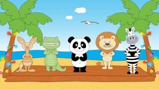 O ritmo do Panda - Festival Panda