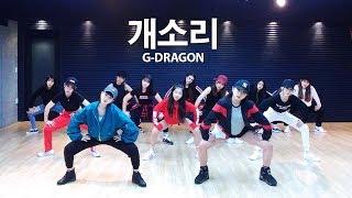 G-dragon - 개소리 (Bullshit) / dsomeb Choreography & PANIA Dance