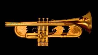 Roberto Carlos - A Distancia - Trompete