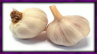 Benefits Eating Raw Garlic Weight Loss - Garlic Its Health Benefits