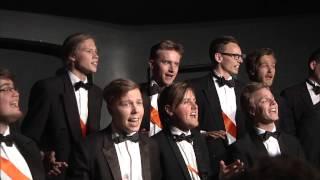 Bromance - Mannskoret Arme Riddere (Vårkonsert 2014)