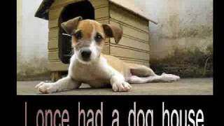 The PUPPY Song ... sequel to The LLAMA song....For Dog Lovers