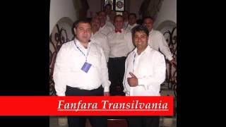 Fanfara Transilvania-Pelin beau, pelin mananc