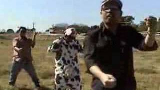 Milk the Cow [Music Video]