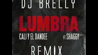 Lumbra Remix - Cali Y El Dandee - DJ Brelly Remix