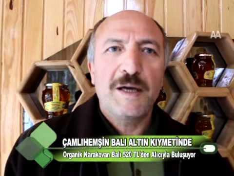 ÇAMLIHEMŞİN BALI ALTIN KIYMETİNDE 01 12 2011.wmv