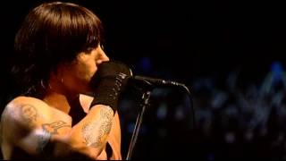Red Hot Chili Peppers - Right on Time (Live at Slane Castle)