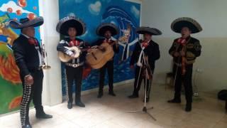 LAS MAÑANITAS - SOL DE MEXICO TELF: 7461788