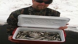 Smelt Fishing Action 2014
