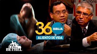 ALIENTO DE VIDA l BIBLIA 360 l INTRO