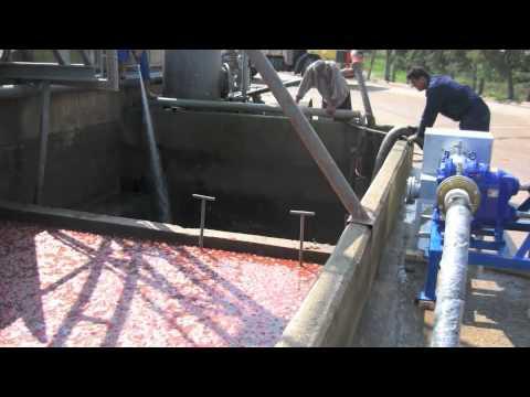 Loplu pompa - Salça fabrikası uygulaması.m4v