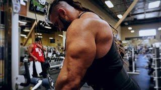 Arm workout   Biceps Workout   Triceps Workout