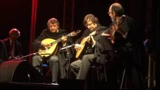 Alma de Coimbra na Feira Mostra de Mação 2017 - Guitarra portuguesa, fado 1
