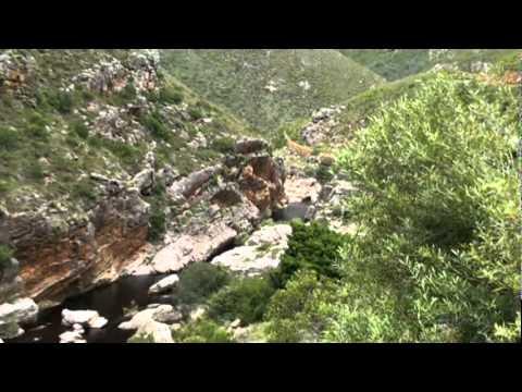 South Africa – Part 7 – Tradauws Pass