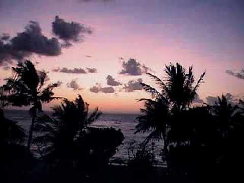 Corn Island Tropical – Marlene Ayerdis