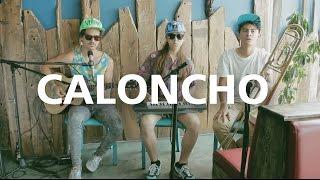 CALONCHO - Palmar (Acústico)