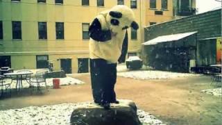 Happy Halloween with Panda Bear !