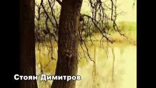 """Стоян Димитров - """"Добро ле ,мъри хубава """" - 2014"""