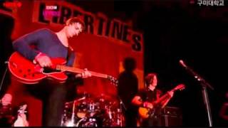 The Libertines - Don't Look Back Into The Sun (Live @ Reading 2010)