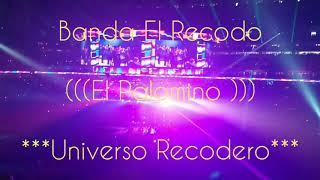 EL PALOMINO (en vivo HD)-BANDA EL RECODO
