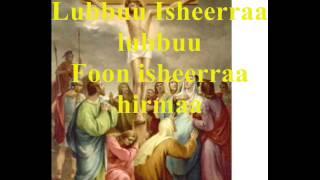 Ethiopian Orthodox Mezmur in Afaan Oromo - Faarfattoota gareedhaan faarfatan - Amma Ifatu nuuf ba'ee