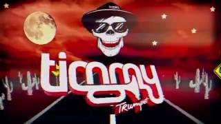 Timmy Trumpet - Timeline