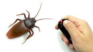 Prank Remote Control Cockroach
