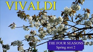 "VIVALDI The Four Seasons Spring ""La primavera"" mvt 2 - Classical Music HD"