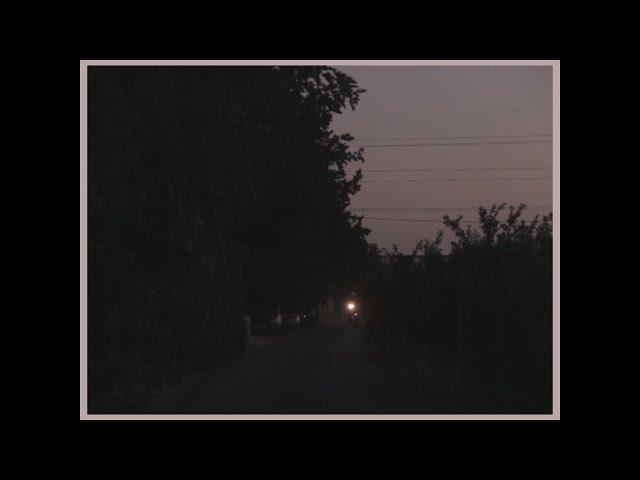 Audio de la canción Petrolos de Rey Lobo