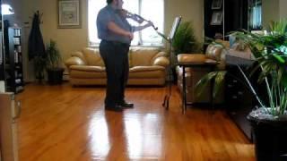 Bach Cello Suite No.1 in G Major- Sarabande (Viola)