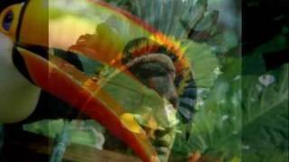 Brazilian Portuguese - Influences of the Tupi-Guarani