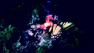 As a Butterfly - Dead by April - Nightcore remix