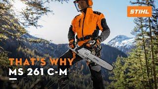 The chainsaw STIHL MS 261 C-M