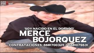 Merce Bojorquez - Soy Nacido En El Dorado (En Vivo 2016)