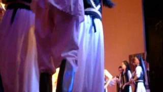 dansatorii din paulis (dans de pe valea muresului)