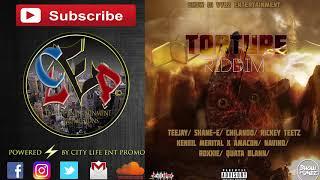 Teejay | Have Mi Gun Dem | Torture Riddim | Nov 2017
