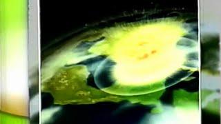 Impacto Súbito - Documentário - Promo - RTP 2 - 1999