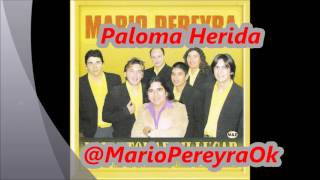Paloma Herida   Mario Pereyra y su Banda