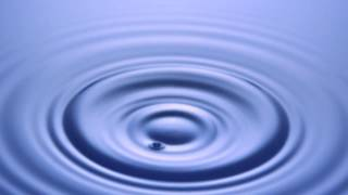 Widex - ZEN Melodie Aqua