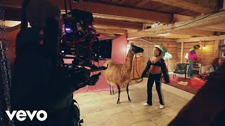 AronChupa, Little Sis Nora - Llama In My Living Room (Behind The Scenes)
