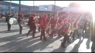 Moliendo Café, banda de marcha Búhos
